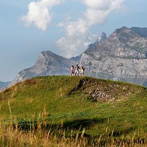 Agence Photo : Paysage Montagne dans le Devoluy