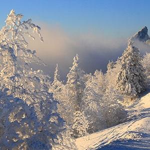 Photo d'Illustration de Paysage Blanc de neige