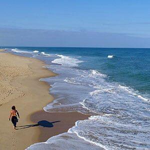 Photo drone : une plage de l'atlantique avec surfeur à Hossegor